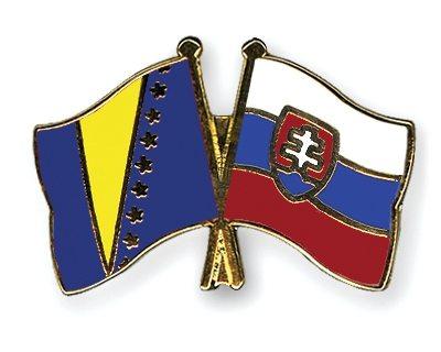 Bosnia-and-Herzegovina-Slovakia-World-Cup-2014