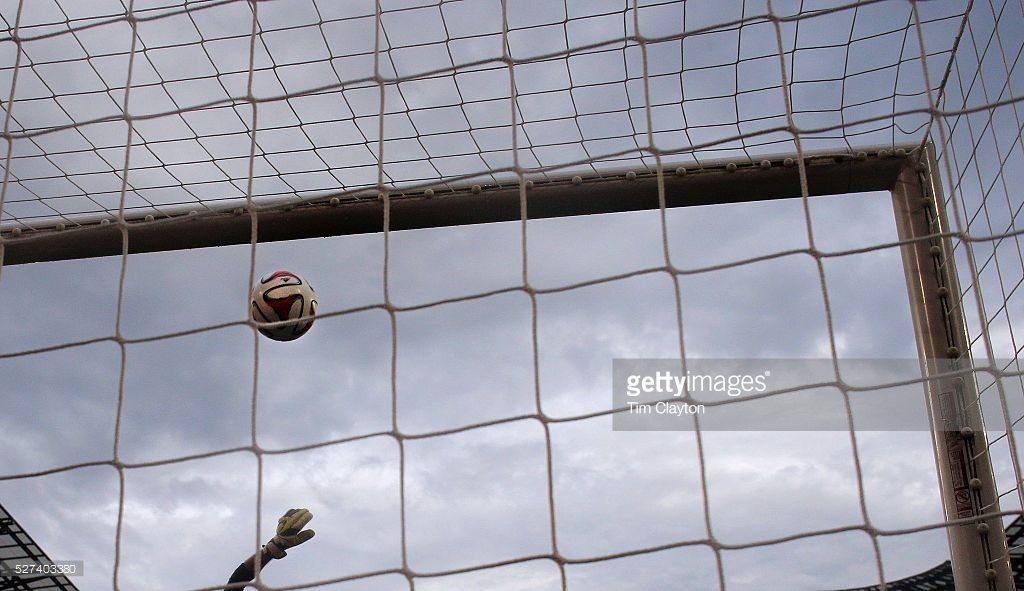 professional soccer goal
